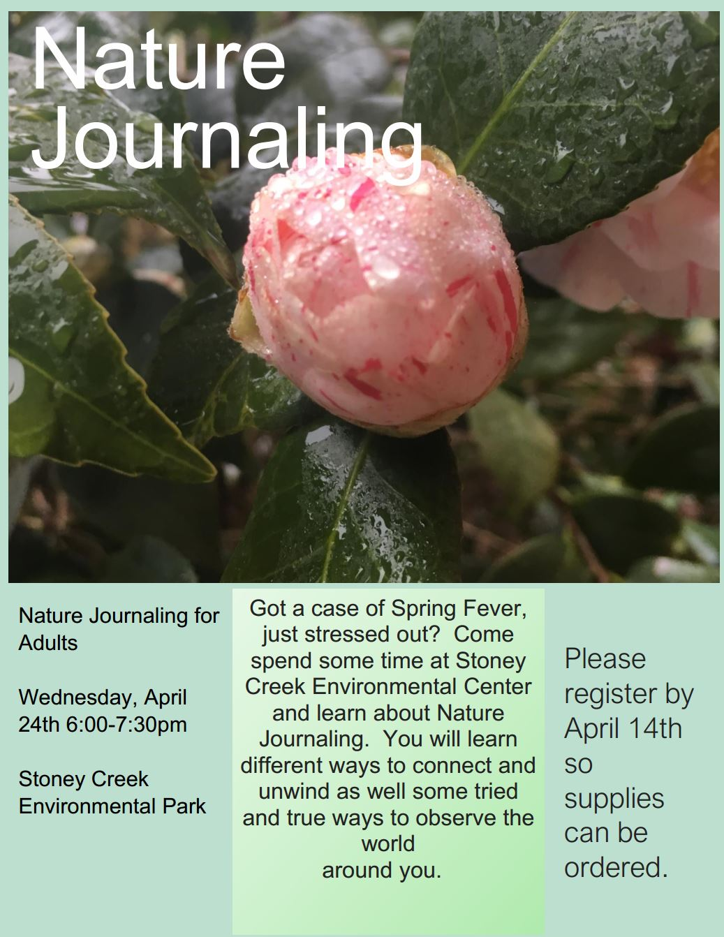 Nature Journaling Flyer
