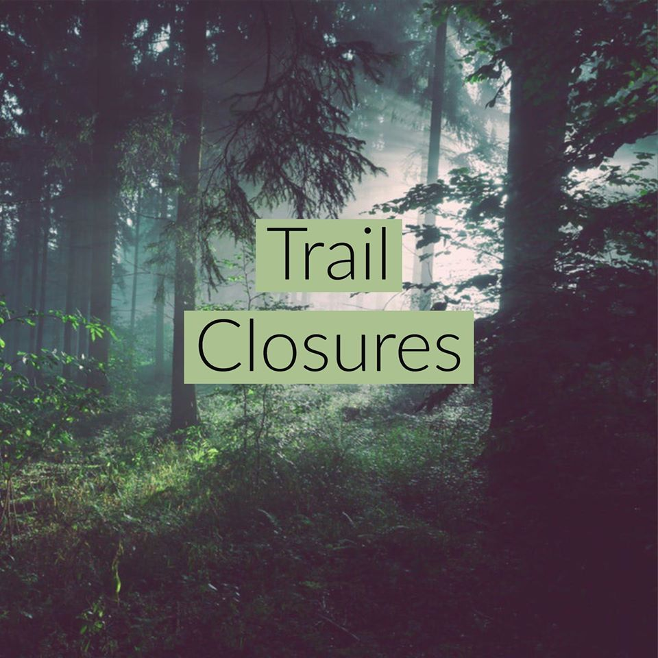Trail Closure words in front of a wooded area