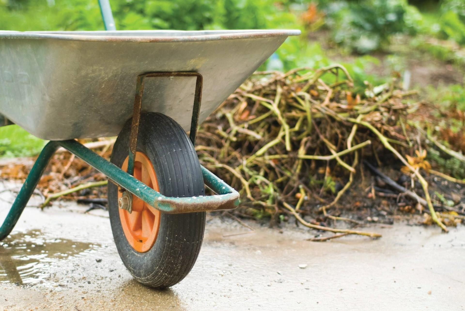 a wheelbarrow and yard waste